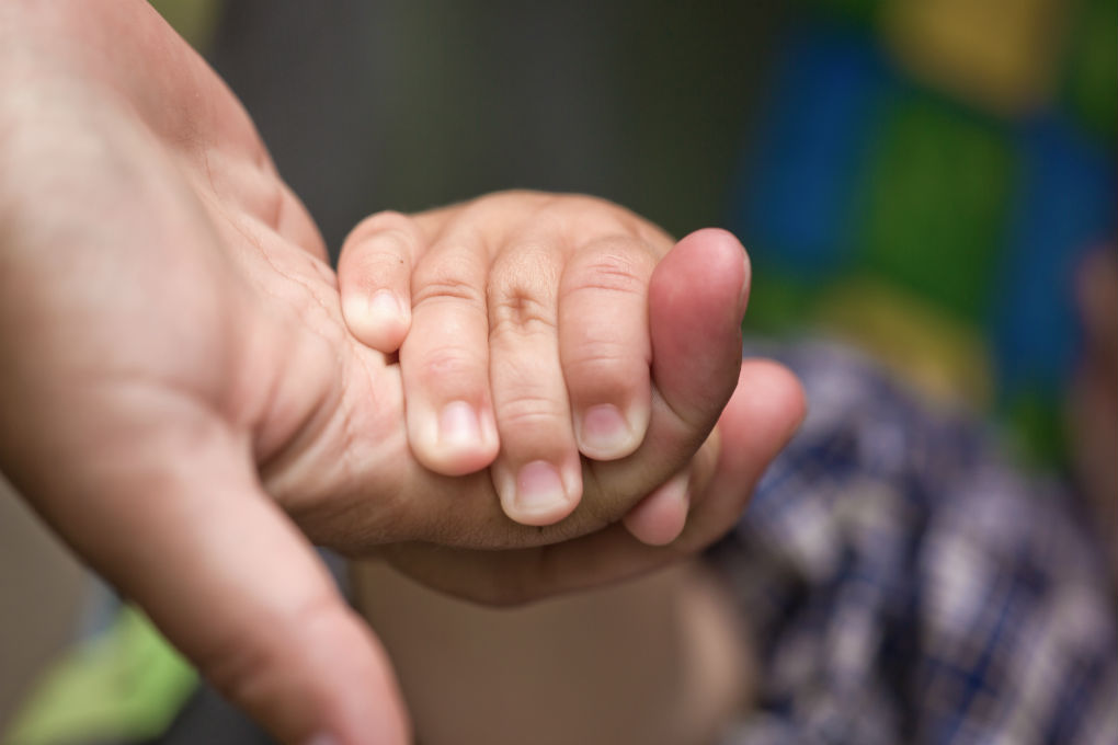 Close-up of small child's hand being held by an adult